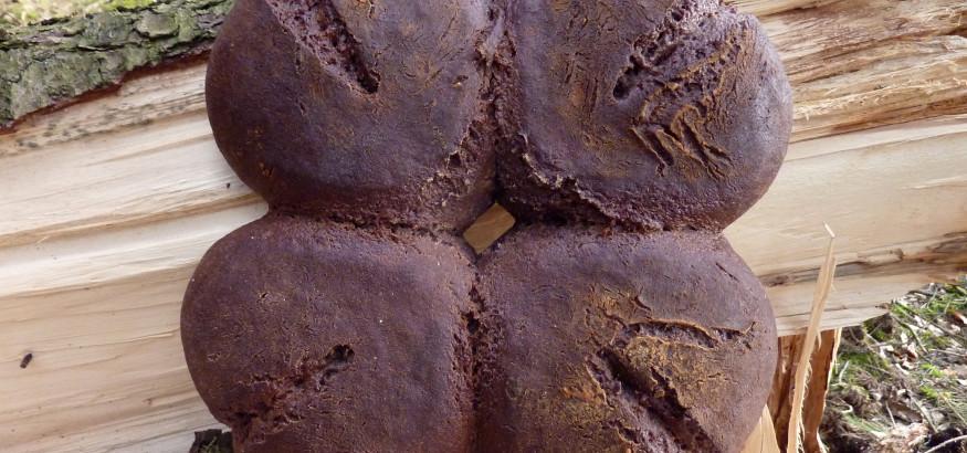 Traubenschalenbrot1